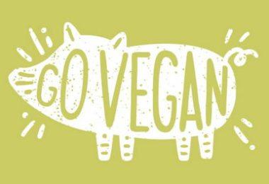 Austin pour les vegan