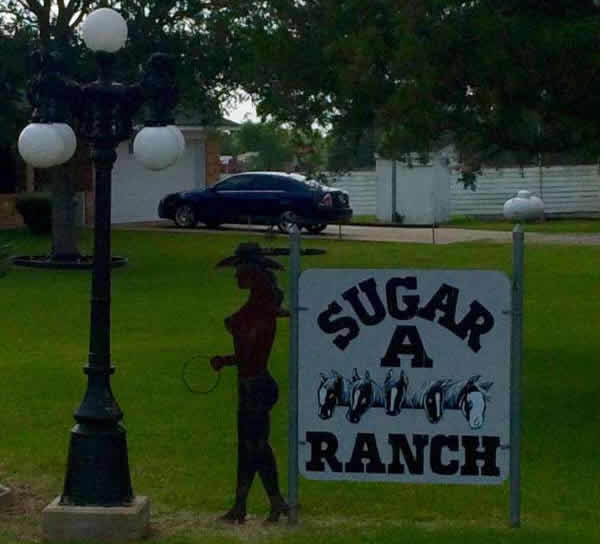 texas-humour-affiches,pancartes-images-no-comment