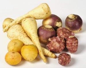 gamme de lŽgumes anciens : navet boule d'or, panais, rutabaga, topinambour