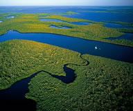 plus-beaux-parcs-nationaux-etats-unis-everglades-192