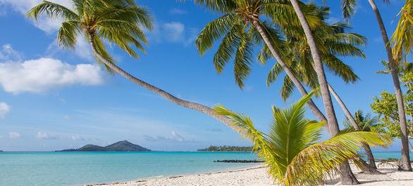 Petit détour par les plus belles plages du monde