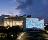 Watch stars of the screen for free under the stars at Miami Beach