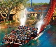 Busch Gardens ou le royaume des montagnes russes en Floride
