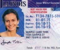 Passer son permis de conduire à Chicago