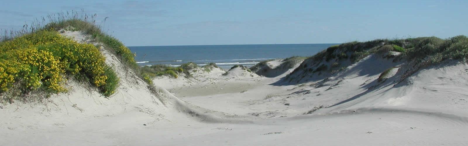 visiter-south-padre-island-vacances-peche-plage-tortues-une