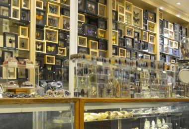 shopping-insolite-boutiques-new-york-une