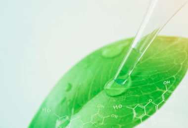homeogum-medication-naturelle-homeopathie-phytotherapie-plantes-featured