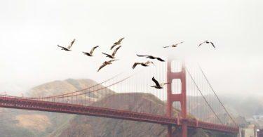 golden-gate-bridge-pont-monument-une