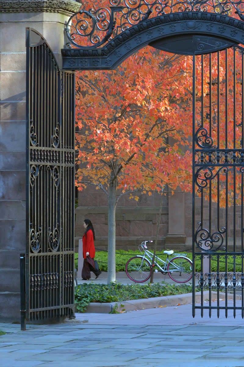 hc-education-conseil-admission-grandes-universites-americaines-g-05