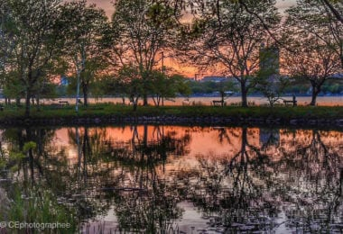 Profiter de la Charles River