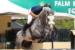 frederic-chateau-chateaux-company-acquisition-location-chevaux-equitation-04d