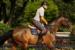 frederic-chateau-chateaux-company-acquisition-location-chevaux-equitation-05d