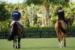 frederic-chateau-chateaux-company-acquisition-location-chevaux-equitation-06d