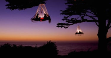 tree-camping-hamac-arbres-foret-georgie-une