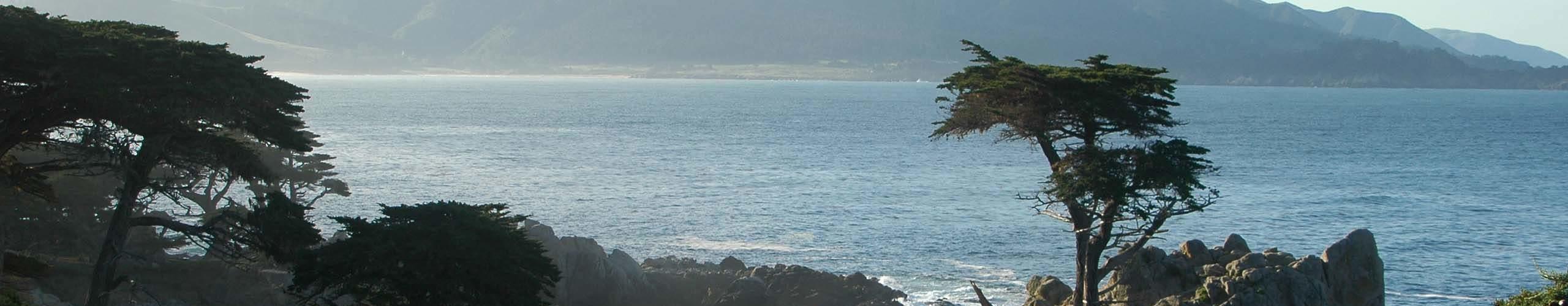 journee-randonees-panorama-baleines-touriste-monterey-featured