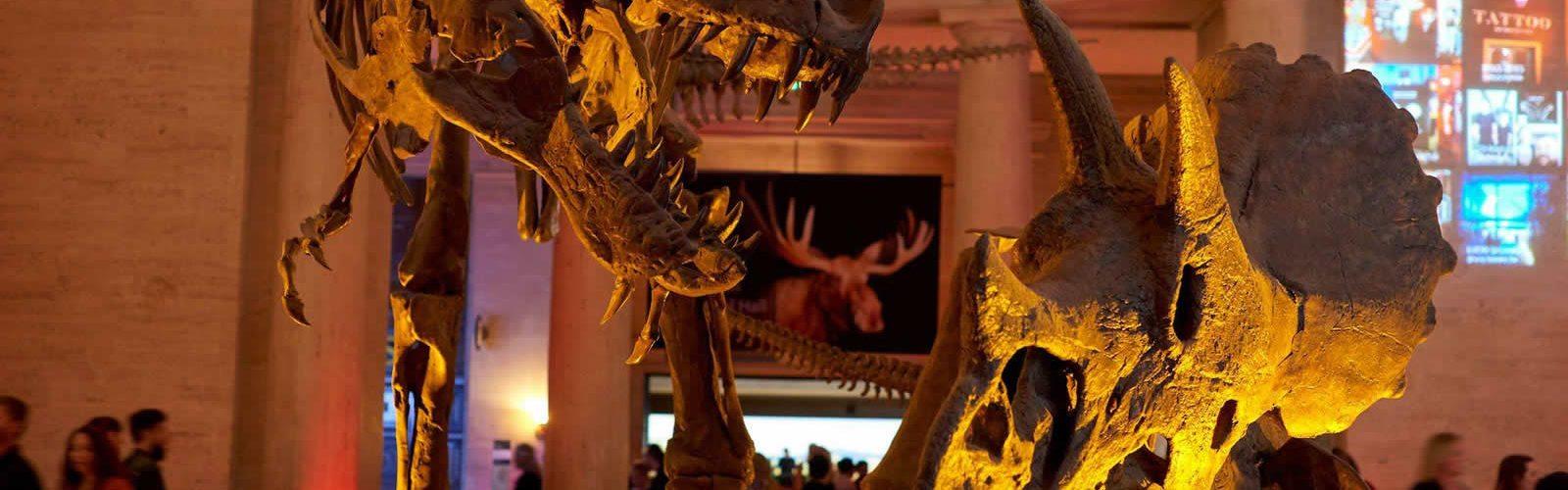 musee-histoire-naturelle-los-angeles-culture-sortie-weekend-visite-une