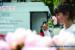 DIAPO_BRAND-BOOSTER-01-01.jpg