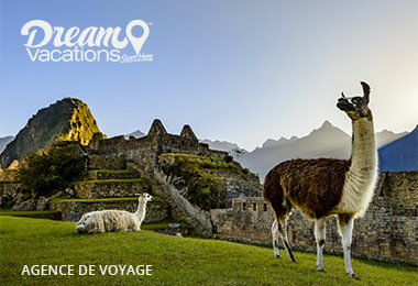 L&L-Discovery-Dream-Vacation-French-District-Agence-Voyage-Miami-Push