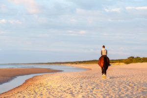 Teenage girl riding horse on the beach at sunset. Baltic sea. Vibrant multicolored summertime outdoors horizontal image.